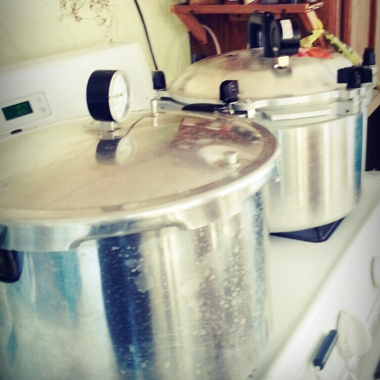 Learning Food Preservation with Pressure Cookers
